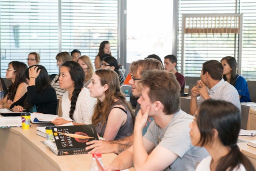 Языковые курсы и обучение в Чехии - актуально в 2020 году